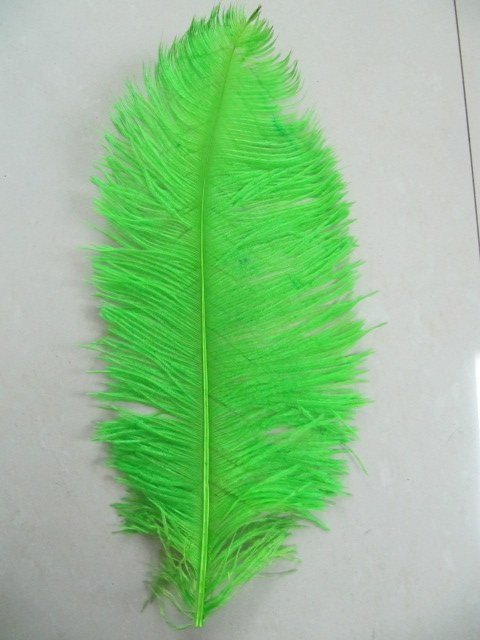 free shipping 18-20inch ostrich feather