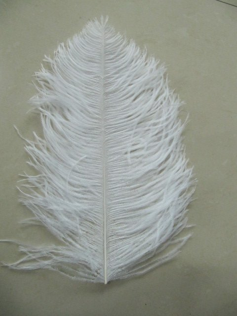 free shipping 26-28inch ostrich feather