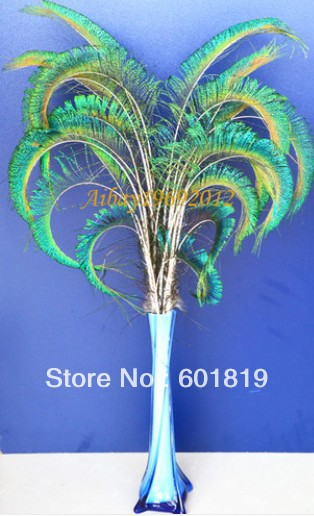 "100pieces 20-25"" CURLY PEACOCK SWORD FERN FEATHERS for wedding centerpiece,Hand Curled Peacock Feather Spray millinery decorate feather"