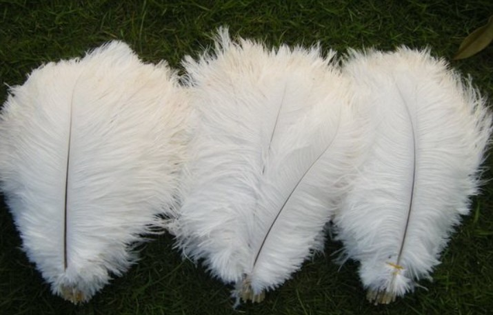 10-12inch whith ostrich feather,wedding centrepiece ostrich feather,dective ostrich feather