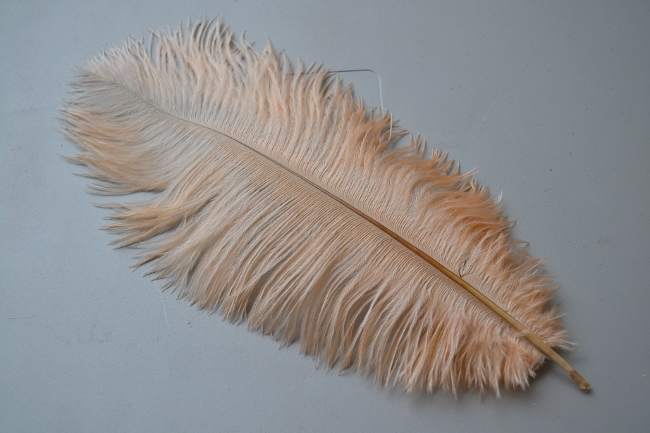 "customized order-200 pieces 12-14"" Peach color ostrich feather"