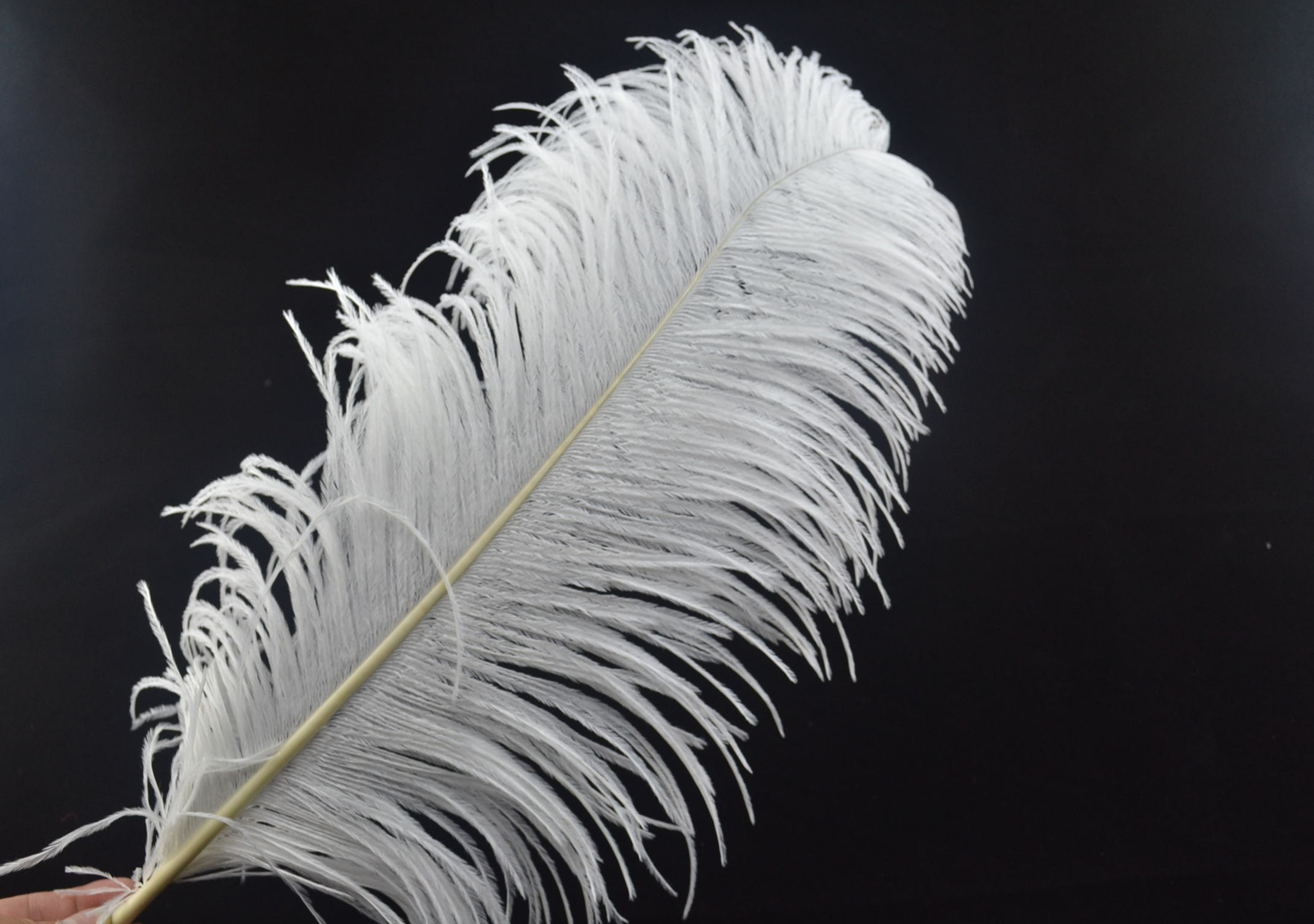 30pcs 18-20inch ostrich feathers - $132.00 ...