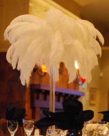 80 pieces 16-18inch ostrich feathers(beige color)