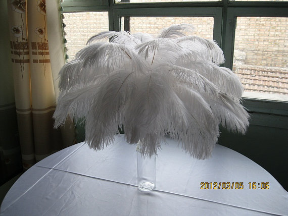 150 white ostrich feathers, 12-14 inches