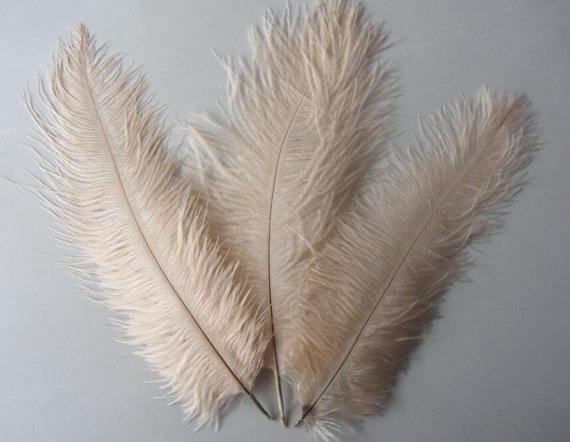 "PART 1:300 x 16"" - 18"" AND 200 x 14"" - 16"" Champagne/taupe ostrich feather for wedding table centerpiece,feather centerpiece"