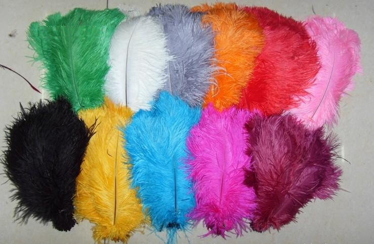 FREE SHIPPINHGDISCOUNT 200pcs/lot 12-14 inches ostrich feather in hot pink and black color