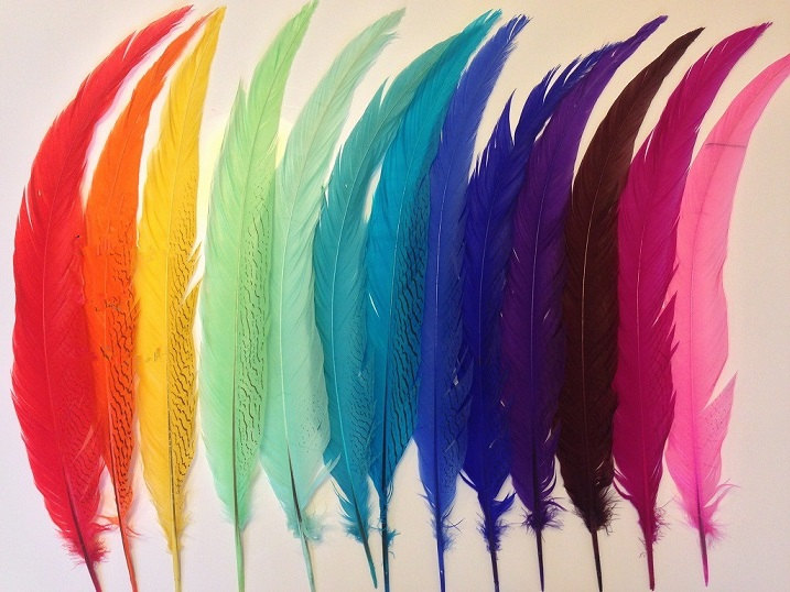 50pcs/lot28-32inch Super Long Silver Pheasant Tail Feather for Showgirl Carnival Costume AAA Quality