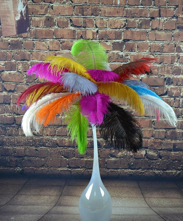 Freeshipping Wholesale Discount 100pcs 12 14inch Colorful Ostrich